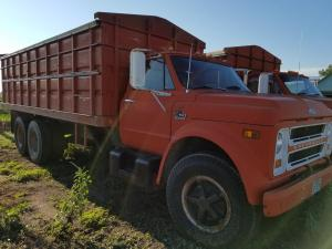 Chevy C50 grain truck for sale