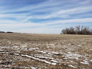 Adam Marshall Auctioneers & Land Brokers - Kearney, Nebraska Land for sale