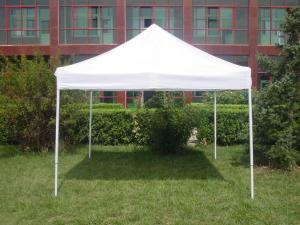 Tent 1010